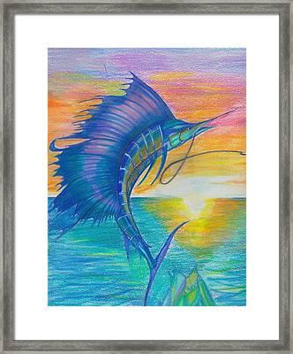 Sail-fishing Framed Print