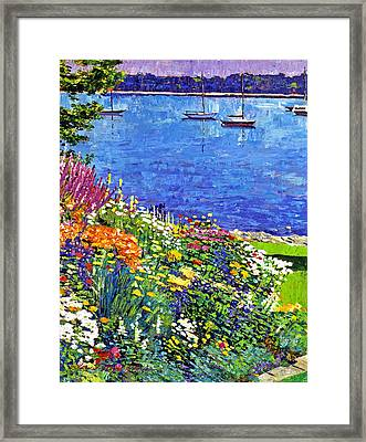 Sailboat Bay Garden Framed Print by David Lloyd Glover