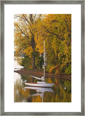 Sailboat In Alburg Vermont  Framed Print by George Robinson