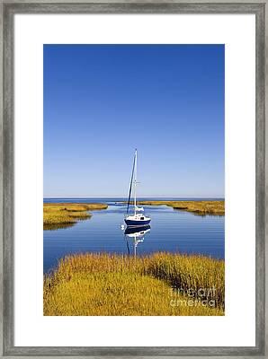 Sailboat In Salt Marsh Framed Print