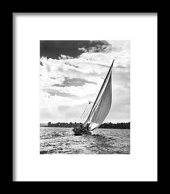 Galloway Framed Prints