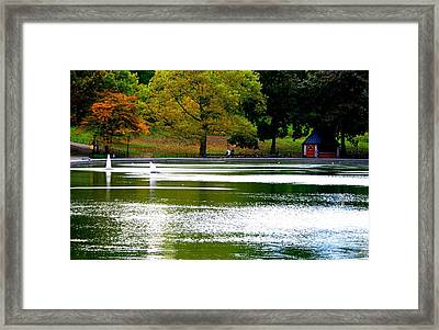 Sailboat Pond At Central Park Framed Print by Christopher Kirby