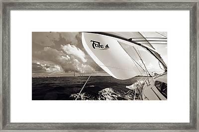 Sailboat Spinnaker Fate Beneteau 49 Charleston Sc  Framed Print by Dustin K Ryan