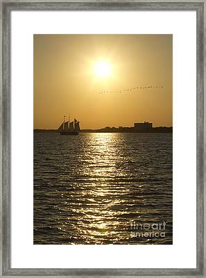 Sailboat Sunset On The Charleston Harbor Framed Print