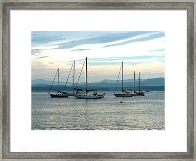 Sailboats Docked Framed Print by Rita Tortorelli