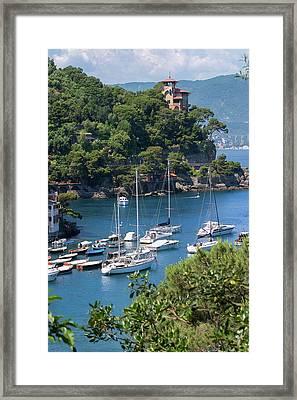Sailboats In Portofino Framed Print