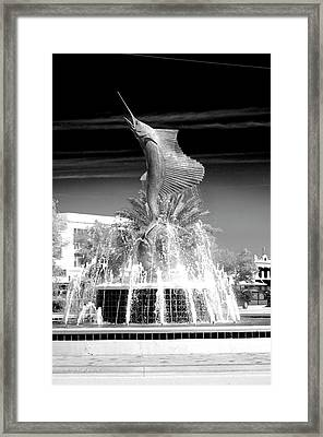 Sailfish Capital Of The World Framed Print