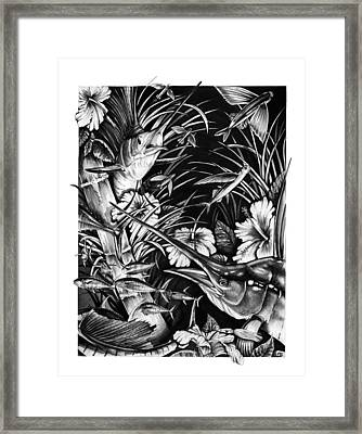 Sailfish Collage Framed Print