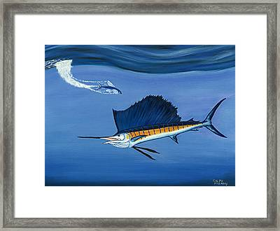 Sailfish - Just Dropped In For Lunch Framed Print by Ralph Martens