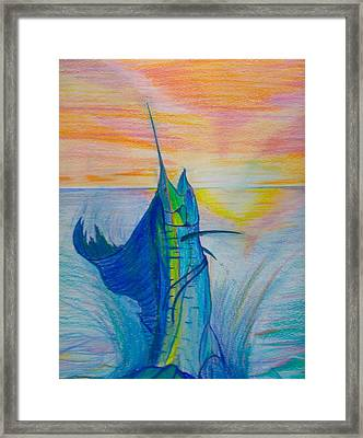 Sailfish Framed Print