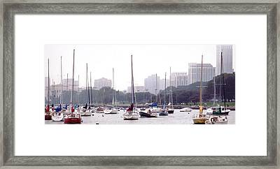 Sailing Amongst Friends Framed Print by Jackie Bodnar