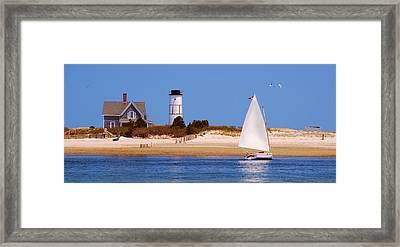 Sailing Around Sandy Neck Lighthouse Framed Print