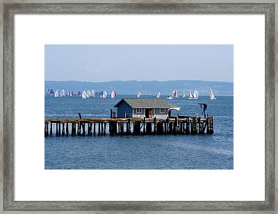 Sailing At Penn Cove Framed Print by Mary Gaines