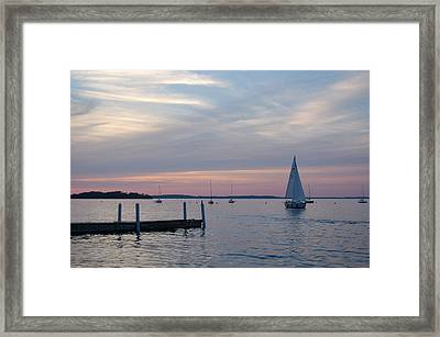 Sailing At The Uw - Madison Framed Print by Lisa Patti Konkol