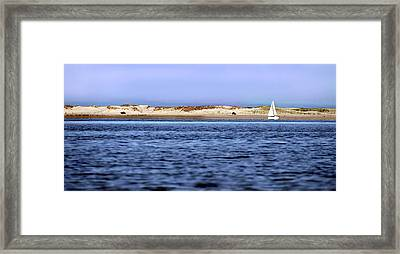 Sailing Blue Framed Print