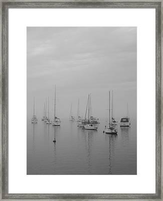 Sailing Bw Framed Print