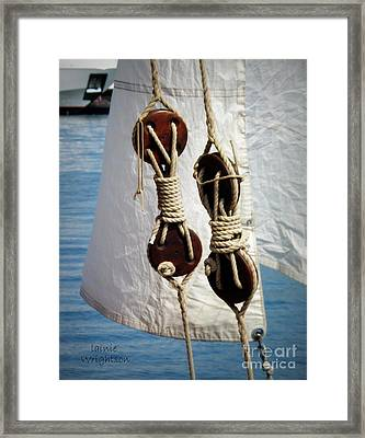 Sailing Dories 2 Framed Print by Lainie Wrightson