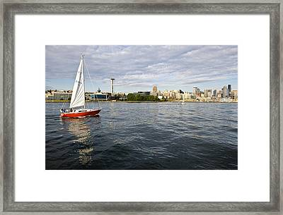 Sailing Downtown Framed Print by Tom Dowd