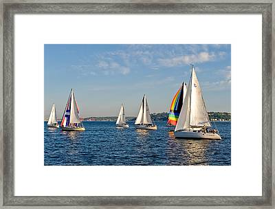 Sailing Group Seattle Framed Print by Tom Dowd