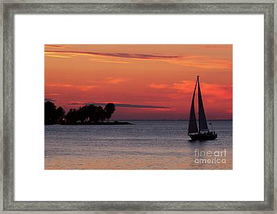 Sailing Home Framed Print by Joel Witmeyer