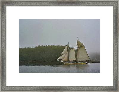 Sailing In The Mist Framed Print