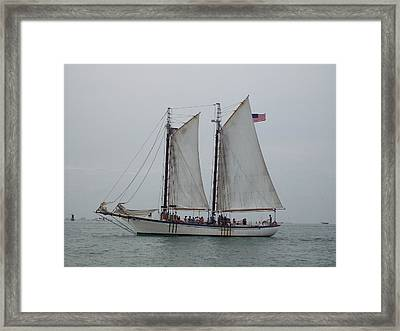Framed Print featuring the photograph Sailing Key West  by Nancy Taylor