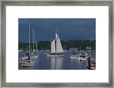 Sailing Framed Print by Lois Lepisto
