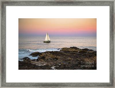 Sailing Off Marginal Way Ogunquit Framed Print