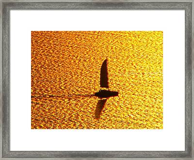 Framed Print featuring the photograph Sailing On Gold by Ana Maria Edulescu