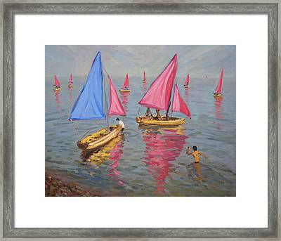 Sailing School Framed Print by Andrew Macara