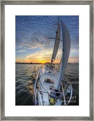 Sailing Sunset Sailboat Fate Charleston  Framed Print by Dustin K Ryan