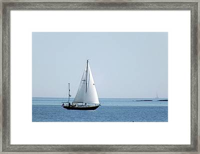 Sailing The Coast Framed Print by Bill Morgenstern