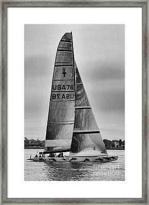 Sailing With Dolphins Framed Print