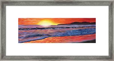 Sailor's Delight Framed Print by Anne West