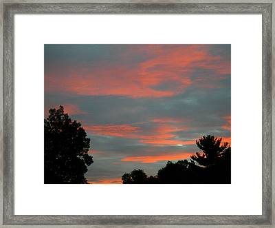 Framed Print featuring the photograph Sailor's Delight by Randy Rosenberger