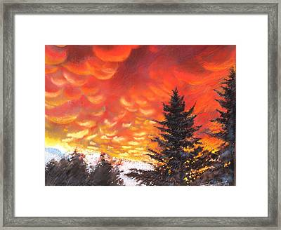 Sailors Delight Framed Print by Sharon Wright