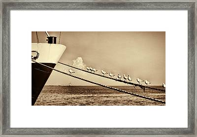 Sailors V2 Framed Print