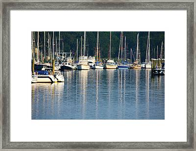 Sails At Dock Framed Print by Karol Livote