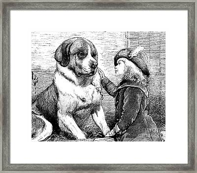 Saint Bernard And Little Girl Framed Print