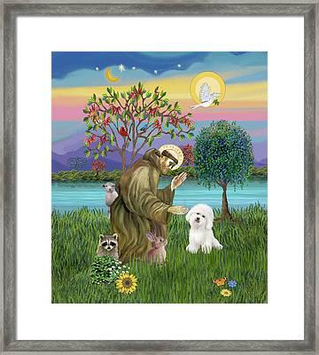 Saint Francis Blesses A Bichon Frise Framed Print