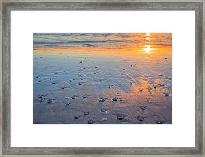 Saint Joseph State Park Framed Print by JC Findley
