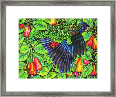 Saint Lucia Amazona Versicolor Parrot Framed Print by Daniel Jean-Baptiste