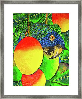Saint Lucia Parrot With Mangos Framed Print