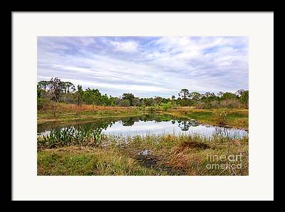 St Lucie County Framed Prints