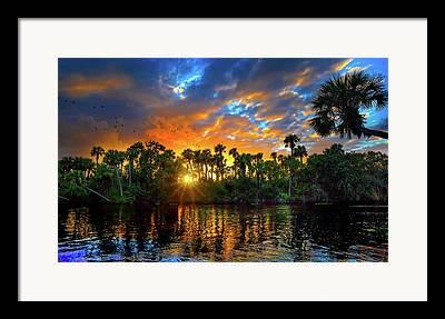 St. Lucie River Framed Prints