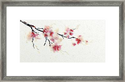 Sakura Branch Framed Print
