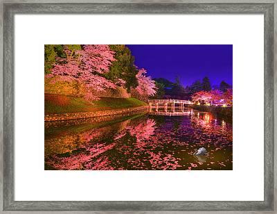 Sakura Dance Framed Print