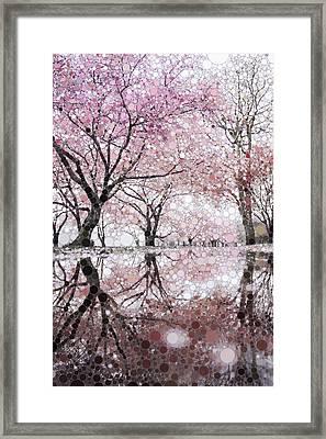 Sakura Spring Pink Framed Print