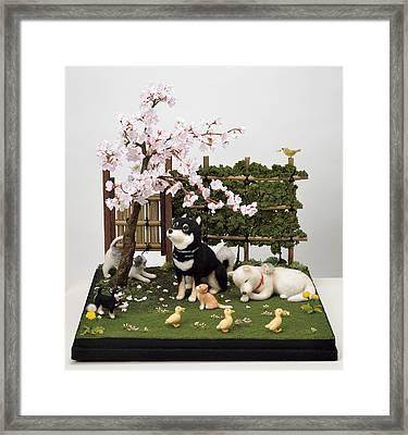 Sakura Framed Print by Yukiko Sato