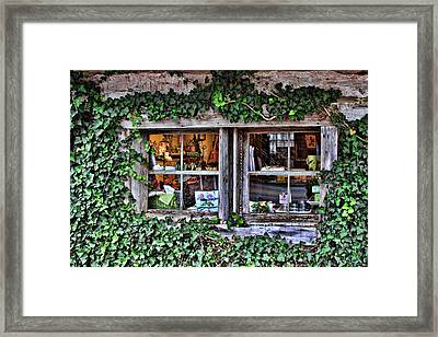 Salado Log Cabin Window Framed Print
